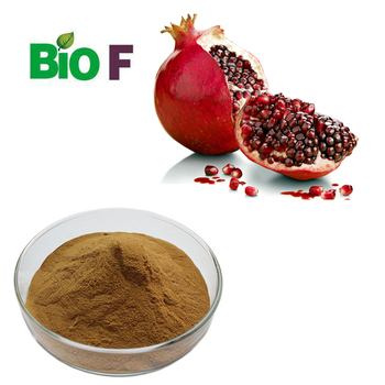 Organic Pomegranate Juice Powder For Health Care