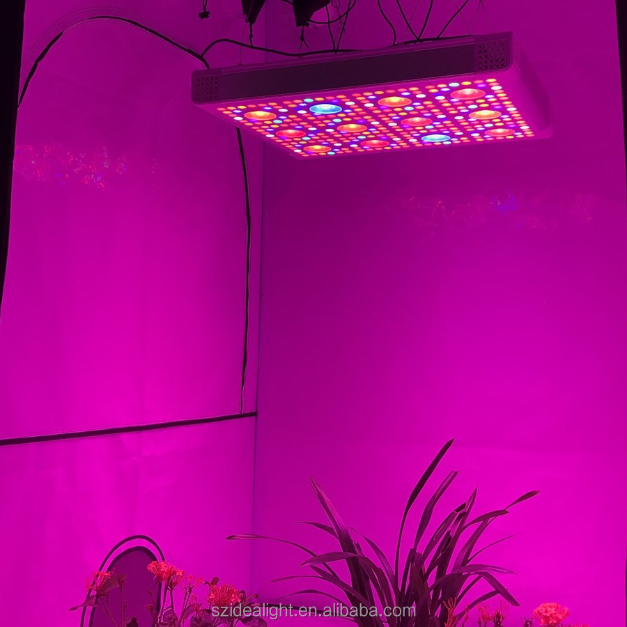 IDEA LIGHT factory Veg Bloom Switchable LED Grow Light 300w 600w 800w 1000w with no noise fan replace used hps lighting