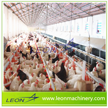 Leon series highly customized pan feeding system for poultry