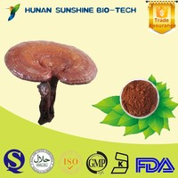 erectile dysfunction powder ganoderma lucidum extract