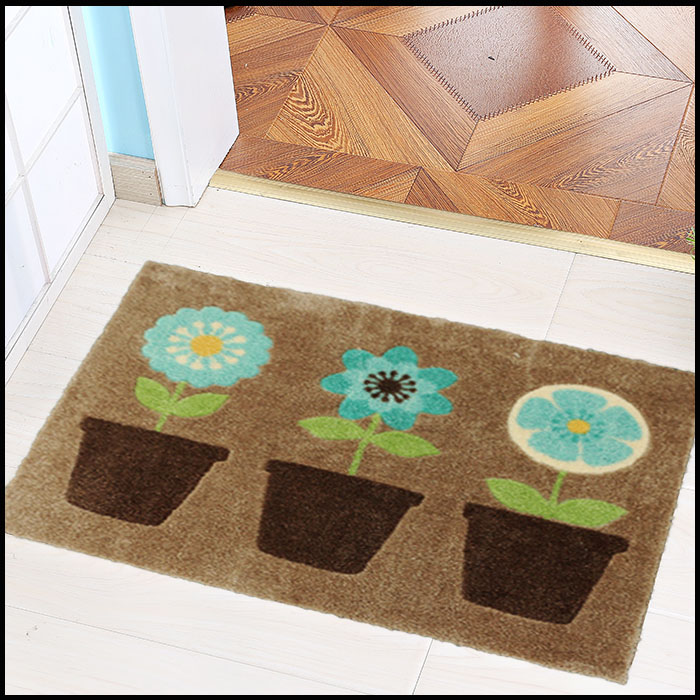 Shoe Cleaning Anti- Slip Door mat