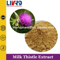 100% natural Herbal Extract Silymarin/Milk Thistle P.E.