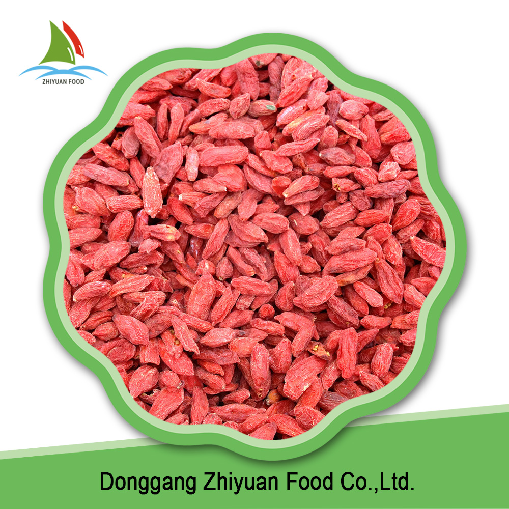 High quality wholesale deep red organic goji berries