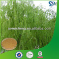 High Quality salicin white willow bark p.e.