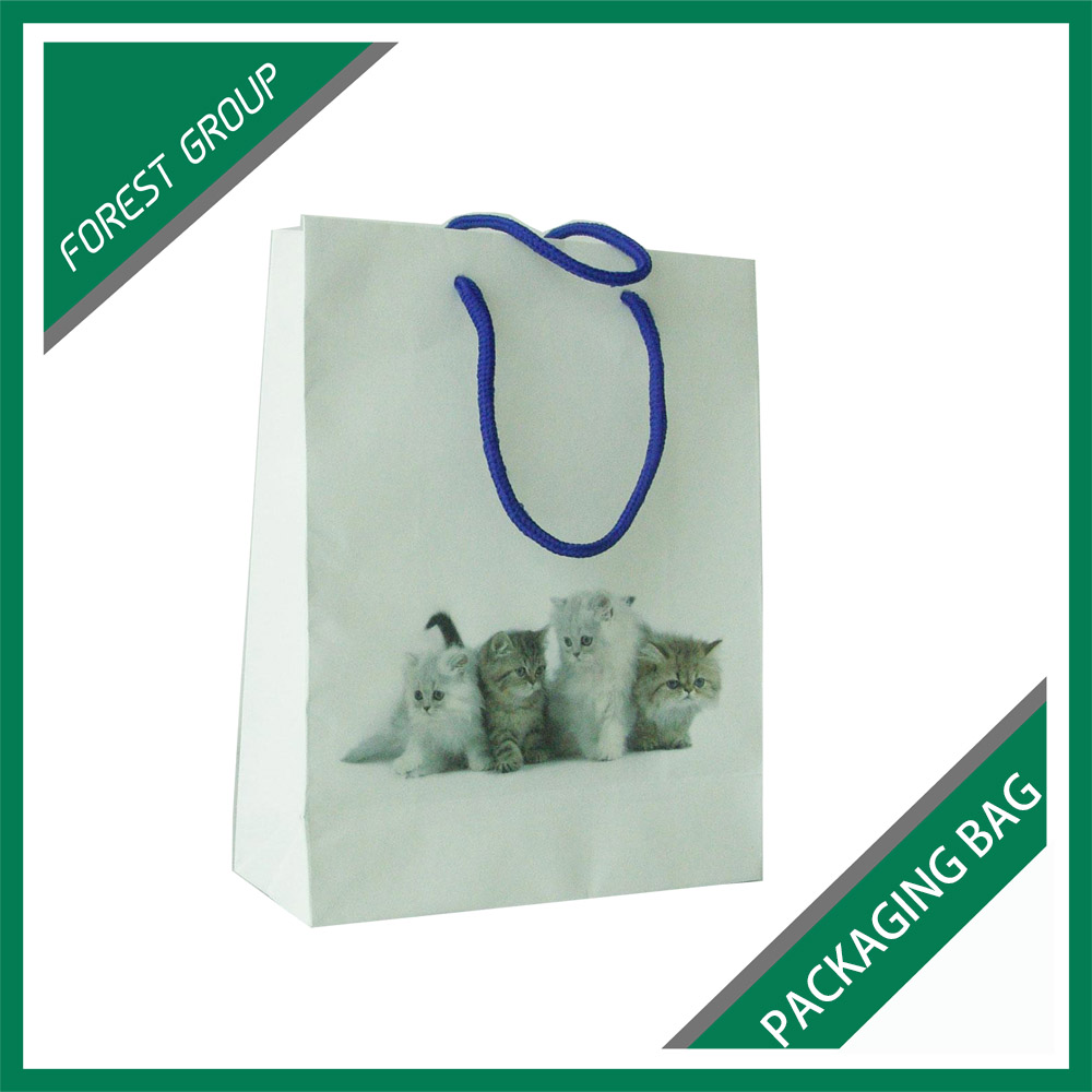 HOUSEHOLD INDUSTRY ART PAPER MATERIAL PETS FOOD PACKAGING PAPER BAG FOR SALE