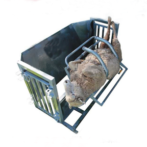 Smooth Galvanized SheepTreatment Turnover Crush Catcher For Vet