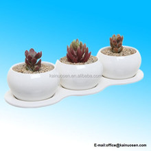 4 Piece Small White Ceramic Planter Set / Kitchen Herb Garden Plant Pots