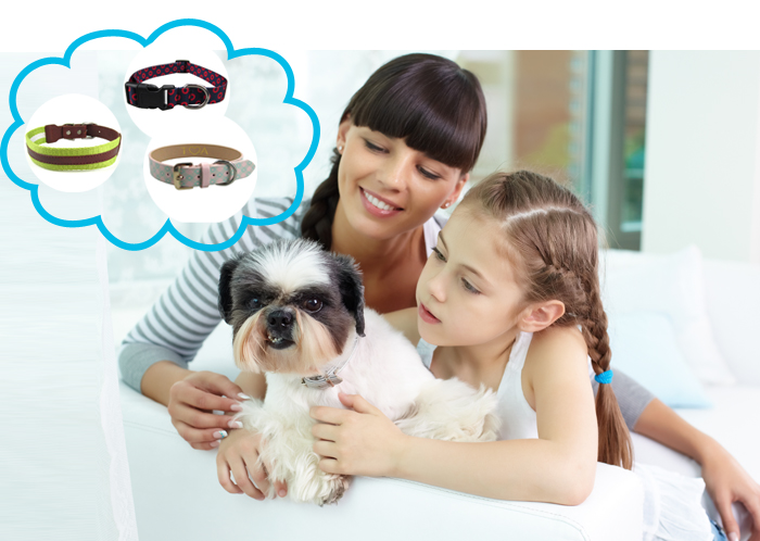 wholesale leather dog leash and collar,dog collar leather