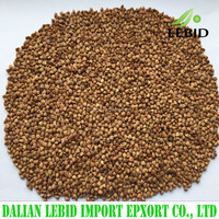 Chinese Bulk Dried Brown Color Wholesale Roasted Buckwheat