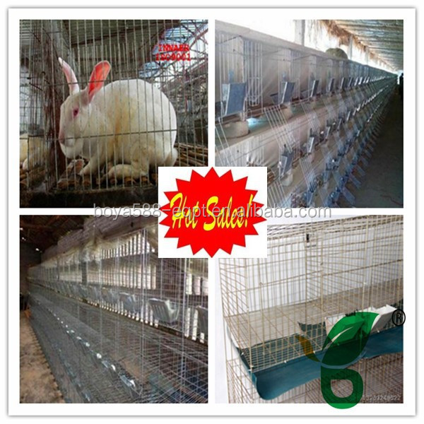 Stainless steel large rabbit cages
