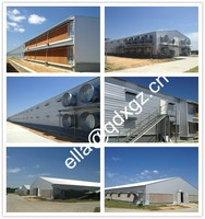 Prefab chicken broiler poultry farm shed design