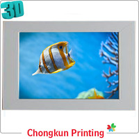 3D lenticular printing 3d pictures of fish for gift