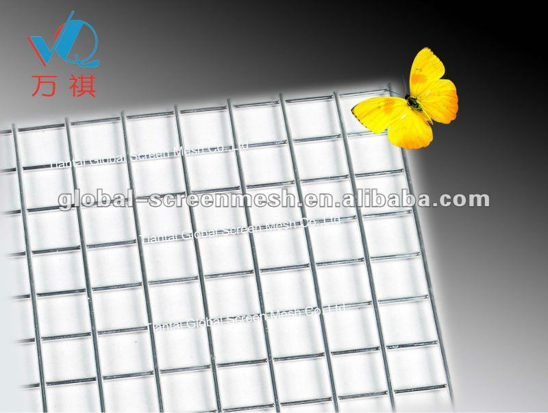 "1/2"" Galvanized Welded Wire Mesh (manufacturer) For construction"