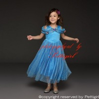 Fashion Girls Cinderella Dresses With Butterlies Blue Movie Cosplay Princess Costume Dress for Girls Delicate Kids Wear