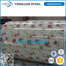 Factory Price Hot Dipped Prepaint Galvanized Steel Coil With Flower Design