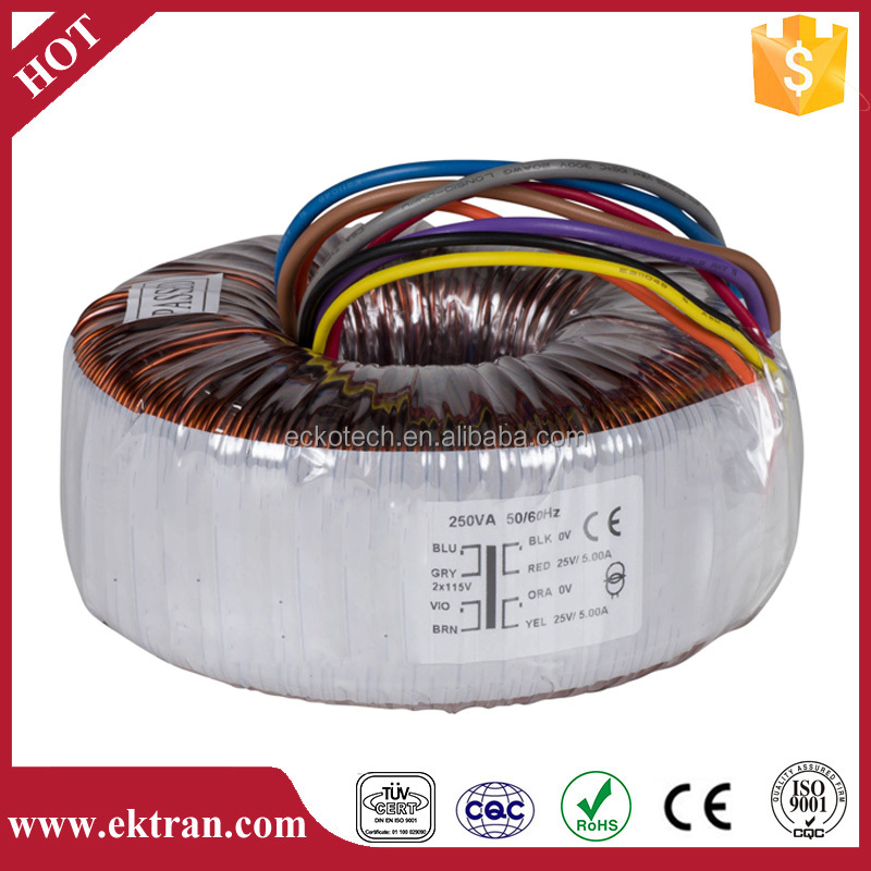 dielectric strength-4000VRMS hipot Toroidal Power Transformer