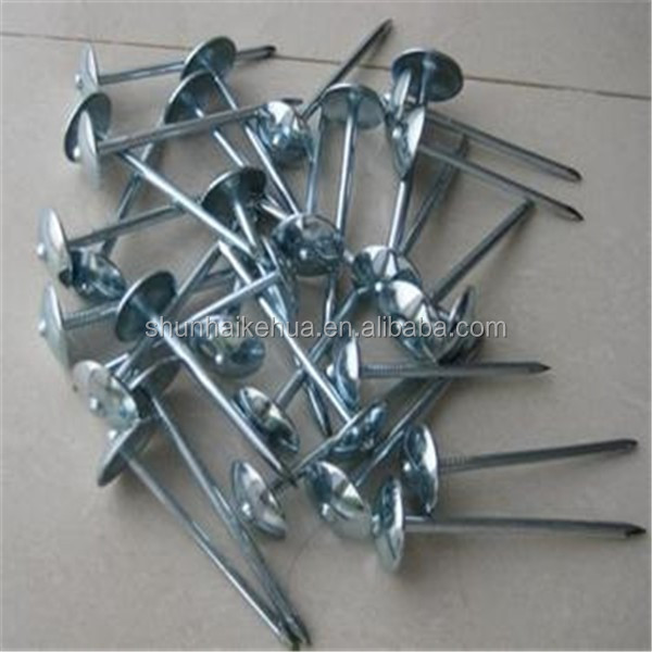 high quality umbrella roofing coil nails with good service