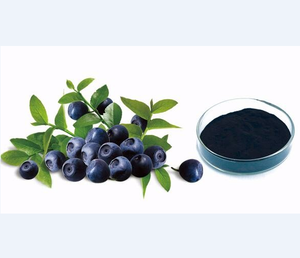 Factory Supply High Quality 25% Anthocyanin Bilberry Extract