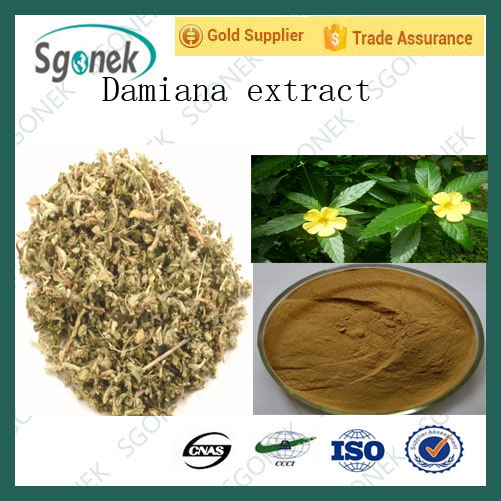 High Quality Low Price Damiana Leaf Extract for health