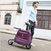 Electro Foldable Scooter With Suitcase 36V