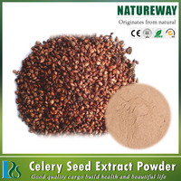 Herb Medicine Celery Seed Extract Blood Pressure,Celery Seed Extract Powder