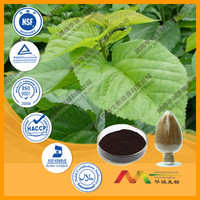 Huachengbio GMP Supplier 1%-2% DNJ white mulberry leaf extract powder