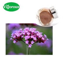 100% Natural Blue Vervain Verbena Extract Powder Extract 4:1
