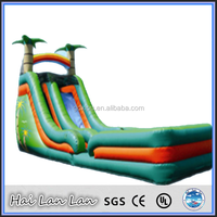2015 New Gaint Wahoo Inflatable Water Slide Amusement Park