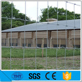Hot dipped galvanized sheep fence page wire for Canada
