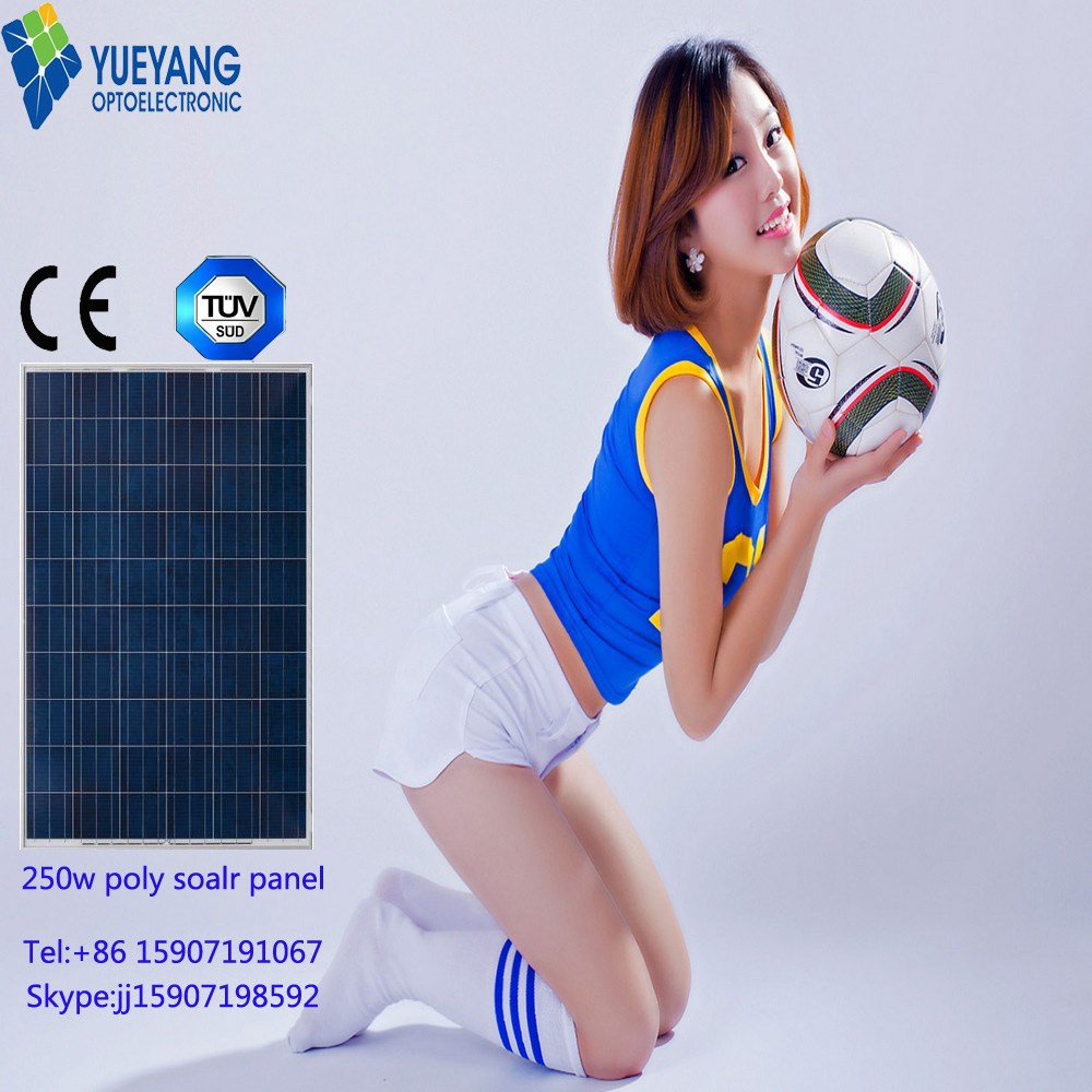 TUV High Quality Chinese Cheap 250W Photovoltaic Solar Single Cell Panel Module Battery Price