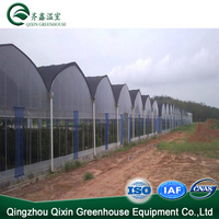 Low cost multispan agricultural PC aquaponics growing systems greenhouse