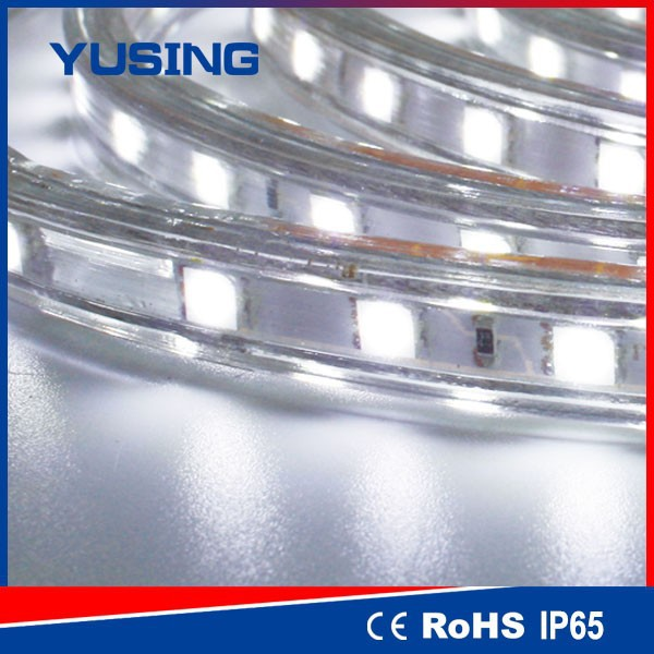 High Power 2 Years Warranty 60 LEDs/Meter 220V 5050 LED Strip