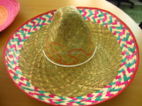 New style plastic hat cover doll hats QHAT-8328