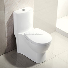 Hight Quality Home use Toilet T9548