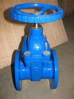 Rubber wedge gate valve/ pound grade double disc slab gate valve picture