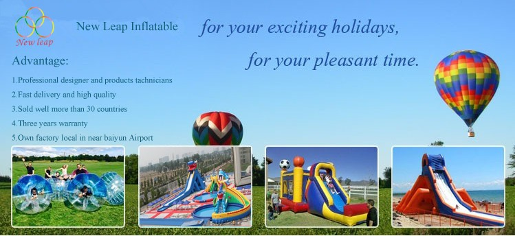 Toys Digital Printing inflatable water slide for kid and adults