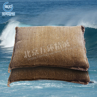 Environment Flood Control Anti Flood Sandbag