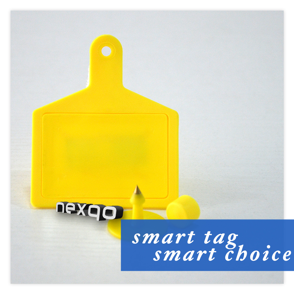 Low cost professional plastic RFID pig/cow/sheep ear tag