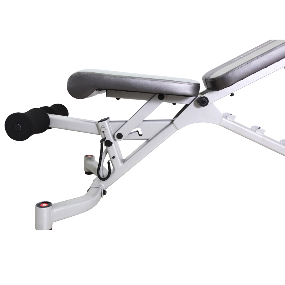 New multifunction sit up bench with dumbbell / multi purpose bench