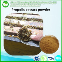 High quality pure natural bee propolis