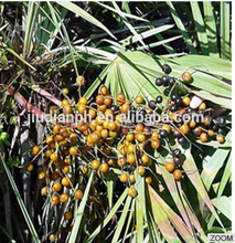 GMP factory Saw Palmetto Fruit Extract Fatty Acids 25%-95%