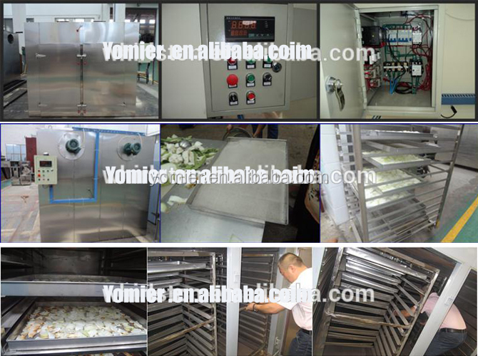 Multi-functional Food Vegetable Dryer Machine Onion Drying Machine