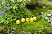 Kids Toys Lovely Animal The chick Figurine Garden Dollhouse Plant Ornament Decor Micro Landscape Bonsai DIY Craft
