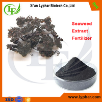 Factory Supply 100% Natural Extract Powder of Seaweed Fertilizer