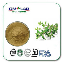 Supplement oregano herbal medicine in good use