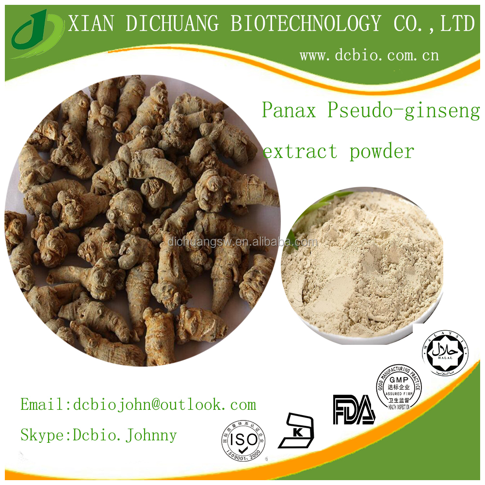 Excellent quality Notoginseng Leaf Extract/Notoginseng Triterpenes by TLC 20:1