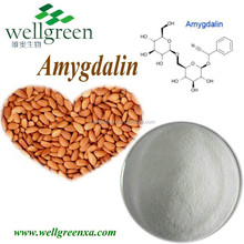 Herb Extract Amygdalin 98% / Bitter Apricot Seed Extract powder / Vitamin B17bulk vitamin b17 powder