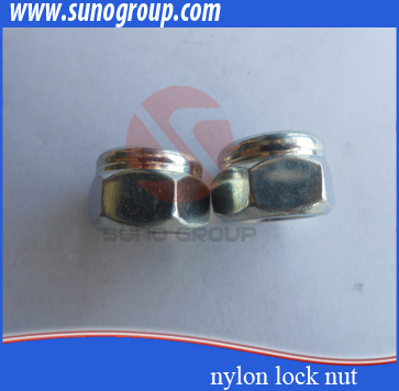 Customized special hex nut gr8 with ts16949 iso9001