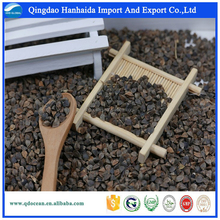 High Quality raw Sweet Buckwheat price