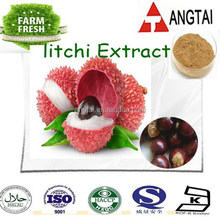 100% Pure Natural Semen Litchi/Lychee seed extract Litchi extract